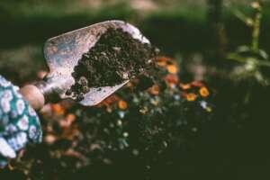 лопатка с пръст